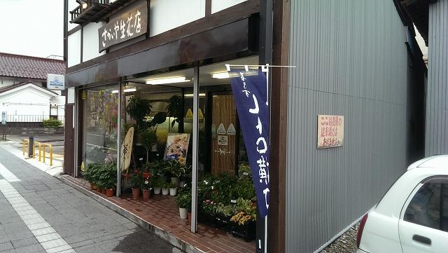 <8>さかいや生花店